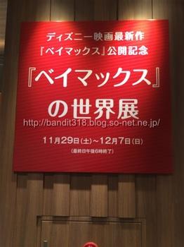 20141129_064250502_iOS.jpg