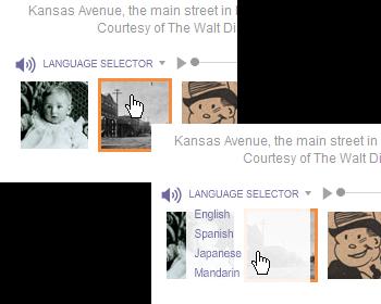 language_selector.png